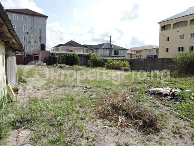 1 bedroom mini flat  Mixed   Use Land Land for rent Off Freedom Way Lekki Phase 1 Lekki Lagos - 3