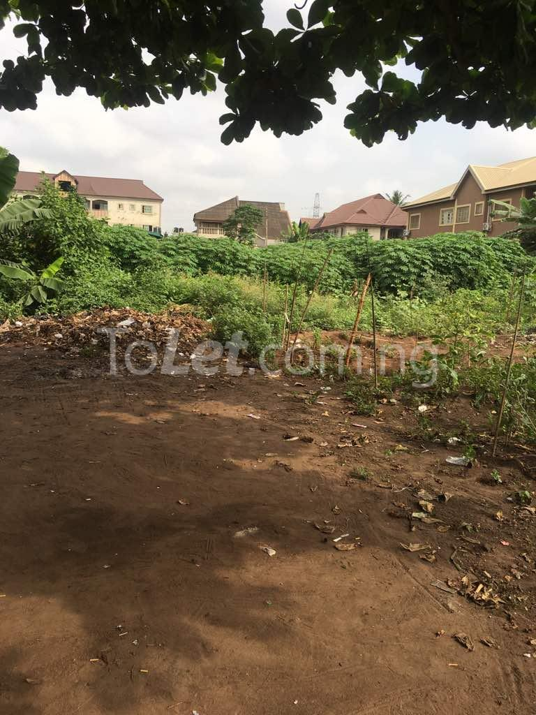 Land for sale Igbo Morenikeji Village , Agbado Ifo Ogun - 0