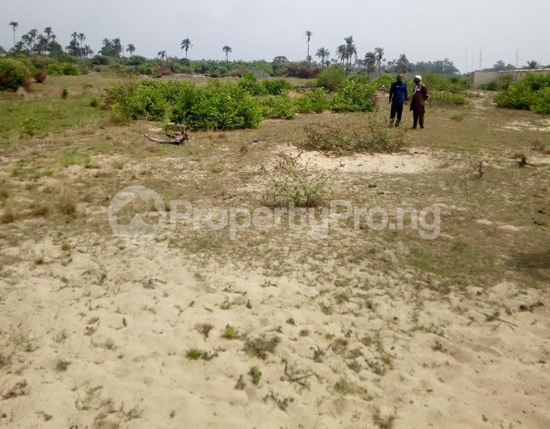 Mixed   Use Land Land for sale Lekki Gold City, Facing Express Ibeju-Lekki Lagos - 2