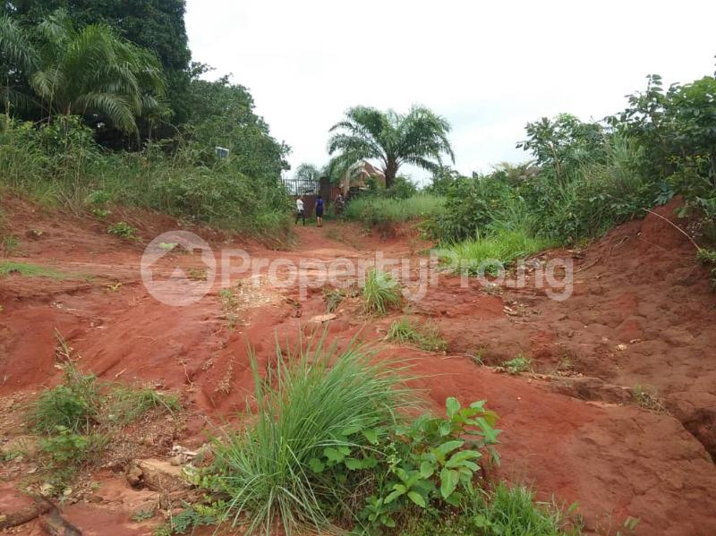 Commercial Land Land for sale Located Along The  Road, Agulare Anambra State Nigeria  Anambra Anambra - 5