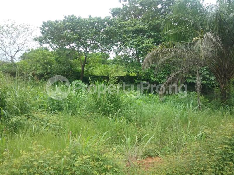 Commercial Land Land for sale Located Along The  Road, Agulare Anambra State Nigeria  Anambra Anambra - 1