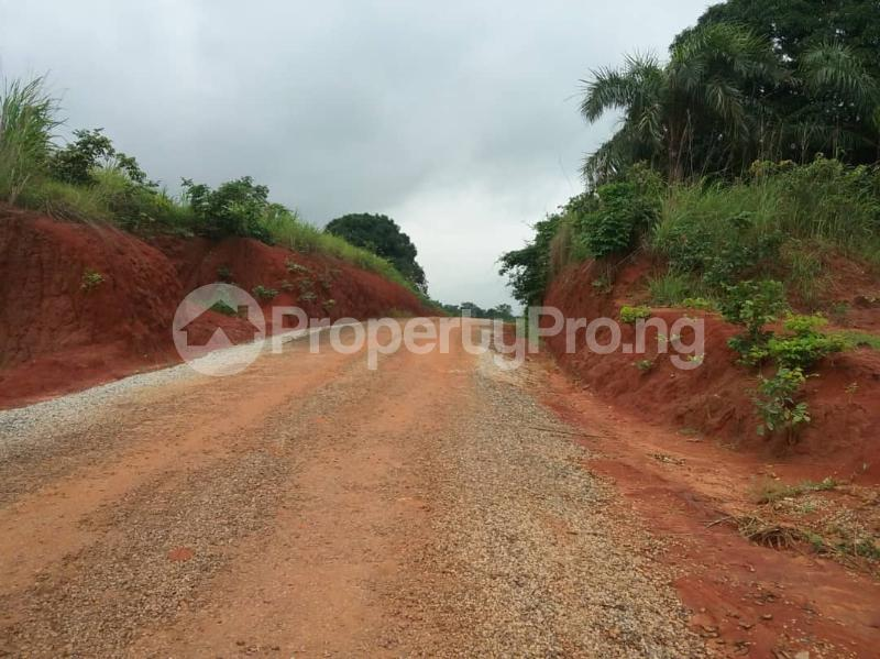 Commercial Land Land for sale Located Along The  Road, Agulare Anambra State Nigeria  Anambra Anambra - 9