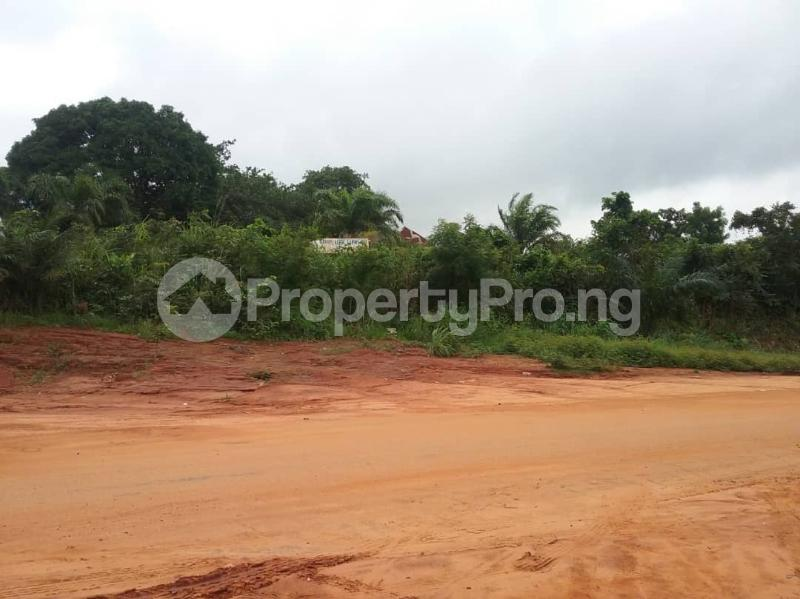 Commercial Land Land for sale Located Along The  Road, Agulare Anambra State Nigeria  Anambra Anambra - 8