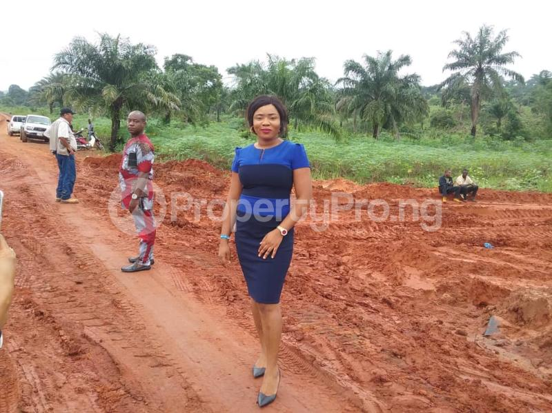 Commercial Land Land for sale Located Along The  Road, Agulare Anambra State Nigeria  Anambra Anambra - 7