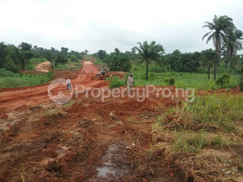 Commercial Land Land for sale Located Along The  Road, Agulare Anambra State Nigeria  Anambra Anambra - 2