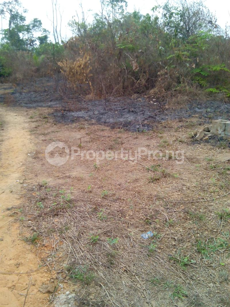 Commercial Land Land for sale Magboro Lagos/Ibadan Expressway Agbado Ifo Ogun - 4