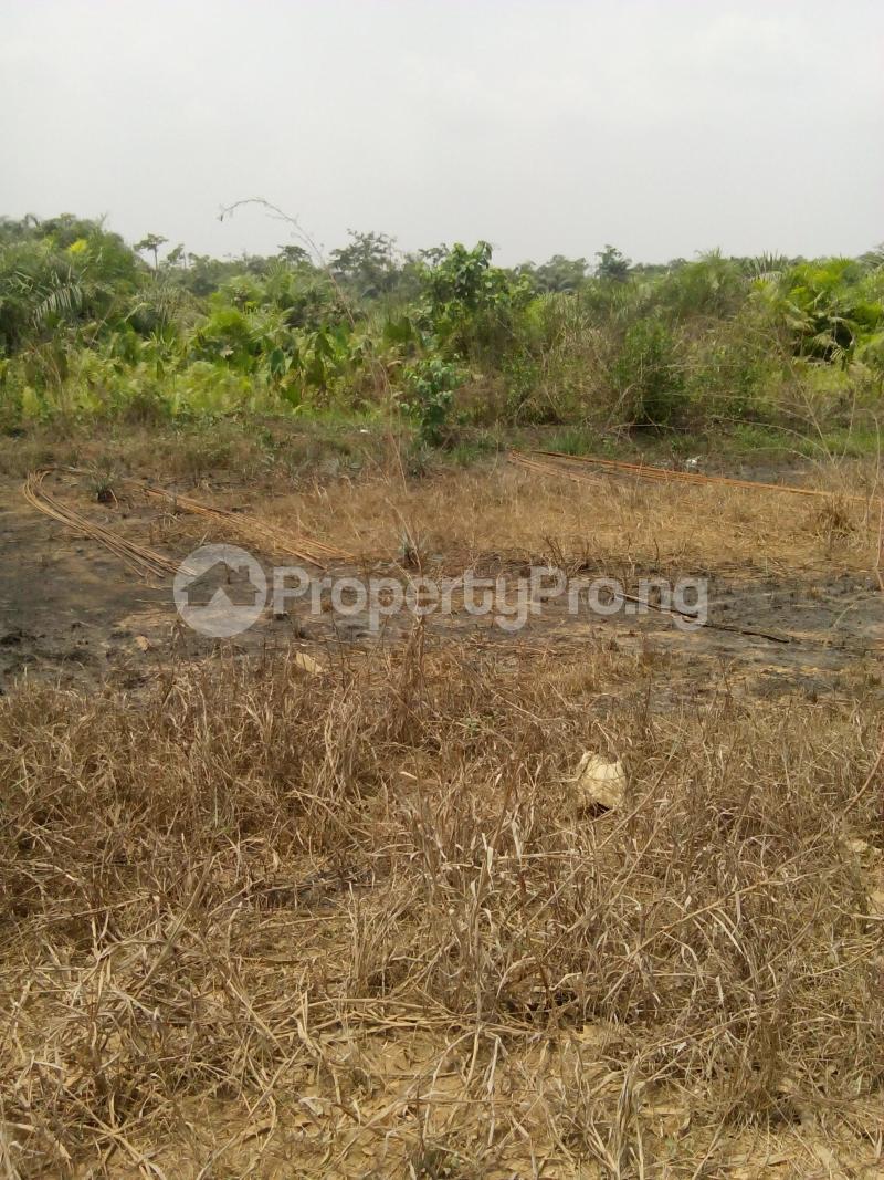 Commercial Land Land for sale Magboro Lagos/Ibadan Expressway Agbado Ifo Ogun - 3