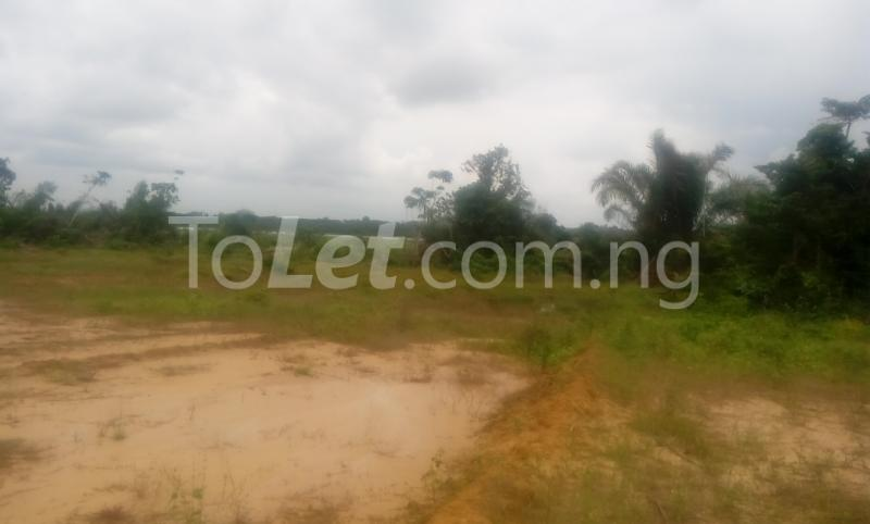 Factory Commercial Property for sale ibeju lekki epe express  Epe Road Epe Lagos - 4