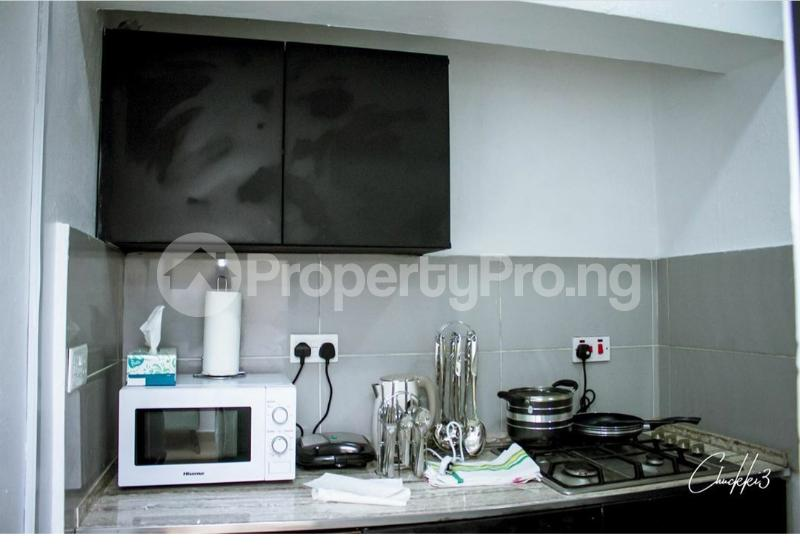 1 bedroom mini flat  Flat / Apartment for shortlet Omorire Johnson Lekki Phase 1 Lekki Lagos - 7