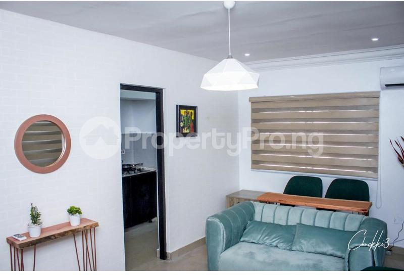 1 bedroom mini flat  Flat / Apartment for shortlet Omorire Johnson Lekki Phase 1 Lekki Lagos - 1