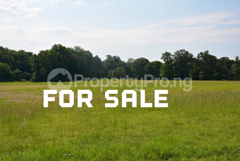 Residential Land Land for sale Onidogbo by Onosa/Baba Adisa Bustop. Ibeju-Lekki Lagos - 0