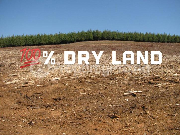 Mixed   Use Land Land for sale Igbogun Community Ibeju Lekki. Ibeju-Lekki Lagos - 0