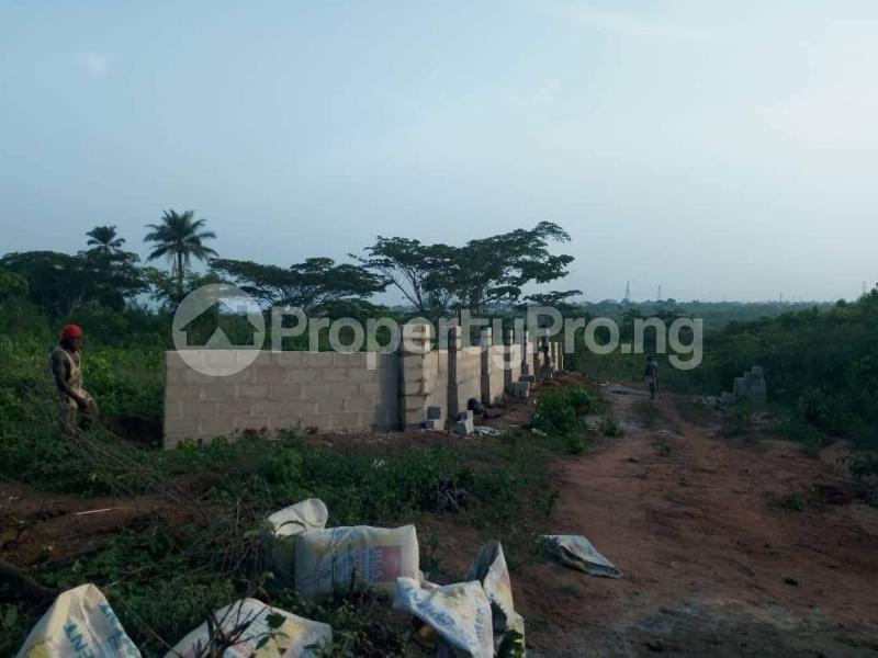 Residential Land Land for sale Asaba Delta - 2