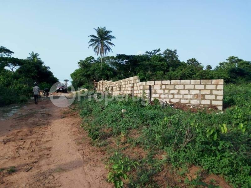 Residential Land Land for sale Asaba Delta - 3