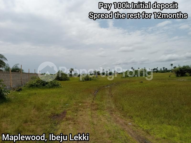 Mixed   Use Land Land for sale Igbogun Town LaCampaigne Tropicana Ibeju-Lekki Lagos - 3