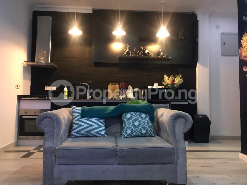1 bedroom mini flat  Flat / Apartment for shortlet T Y Danjuma Street Ligali Ayorinde Victoria Island Lagos - 15