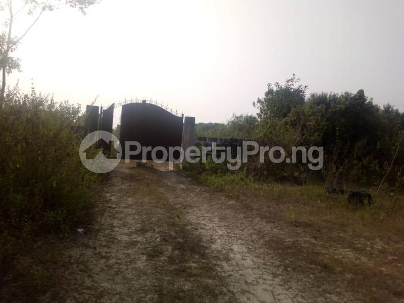 Mixed   Use Land Land for sale Powo Village Eluju Ibeju-Lekki Lagos - 2