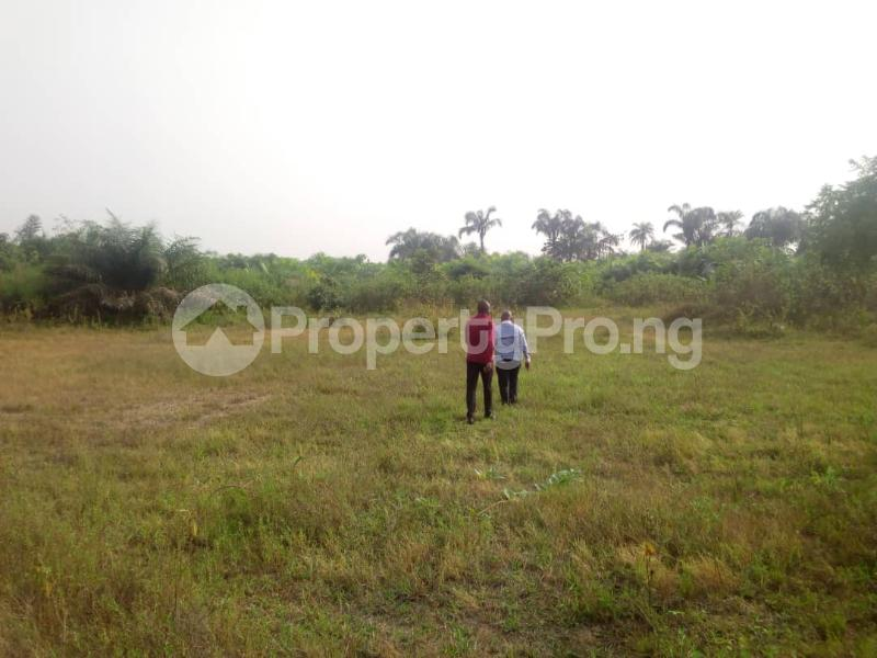 Mixed   Use Land Land for sale Powo Village Eluju Ibeju-Lekki Lagos - 3