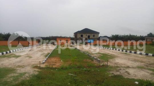 Residential Land Land for sale Akodo road; Free Trade Zone Ibeju-Lekki Lagos - 4