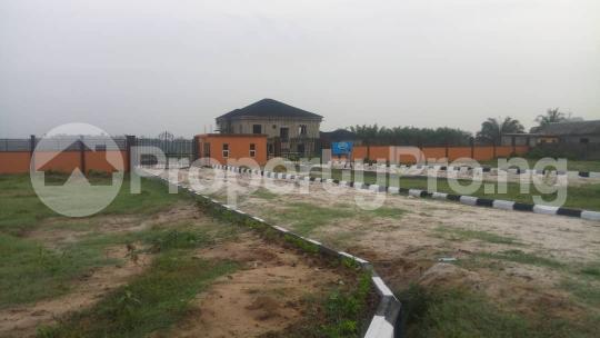 Residential Land Land for sale Akodo road; Free Trade Zone Ibeju-Lekki Lagos - 7