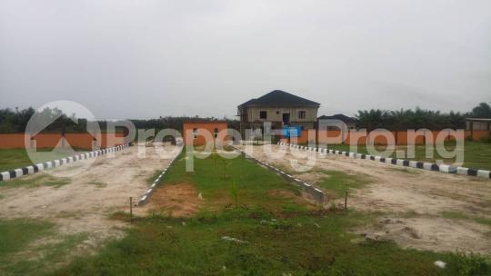 Residential Land Land for sale Akodo road; Free Trade Zone Ibeju-Lekki Lagos - 1
