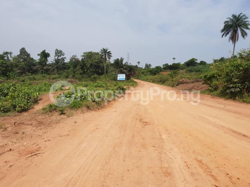 Land for rent Yewa Epe Road Epe Lagos - 10
