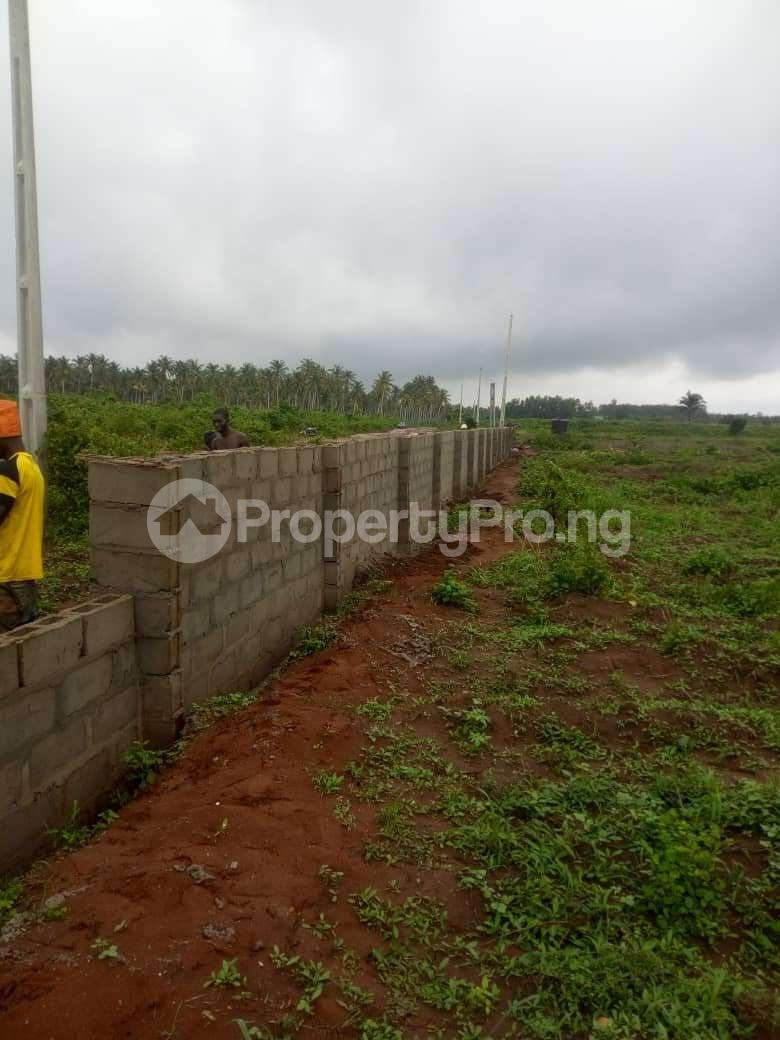 Residential Land Land for sale  Mowo, Badagry  close to Buhari Estate and Badagry Megaport Age Mowo Badagry Lagos - 1