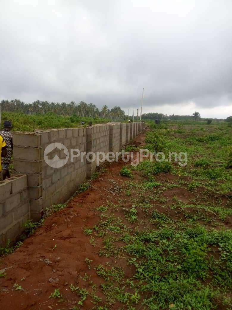 Residential Land Land for sale  Mowo, Badagry  close to Buhari Estate and Badagry Megaport Age Mowo Badagry Lagos - 0