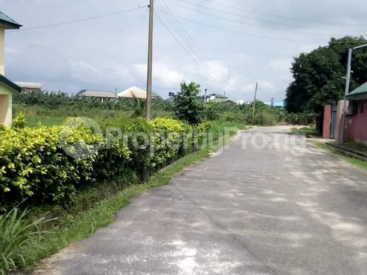Residential Land Land for sale Rumuodomaya Rupkpokwu Port Harcourt Rivers - 3