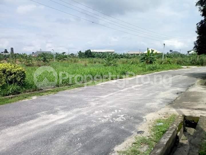 Residential Land Land for sale Rumuodomaya Rupkpokwu Port Harcourt Rivers - 1