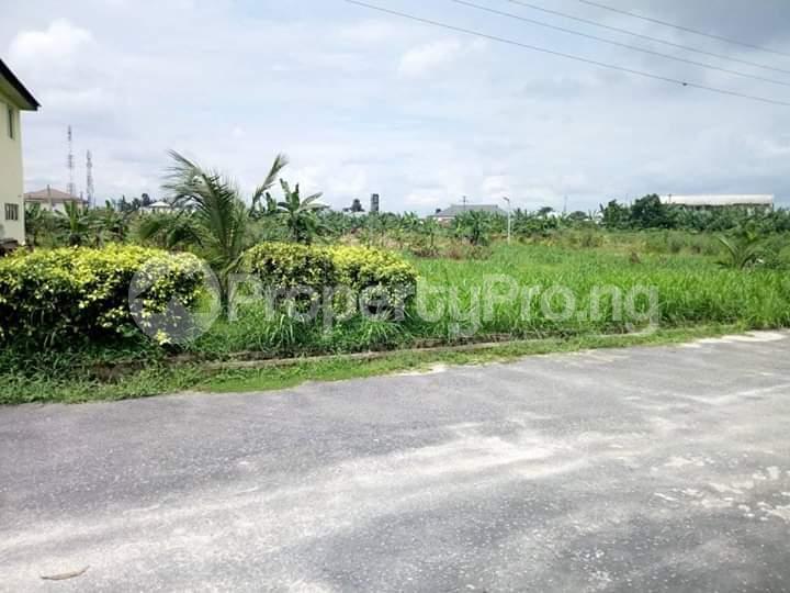 Residential Land Land for sale Rumuodomaya Rupkpokwu Port Harcourt Rivers - 4