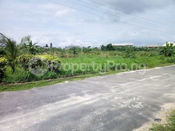 Residential Land Land for sale Rumuodomaya Rupkpokwu Port Harcourt Rivers - 2