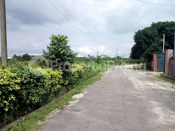 Residential Land Land for sale Rumuodomaya Rupkpokwu Port Harcourt Rivers - 5