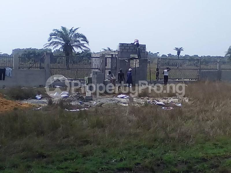 Land for sale Mawejo LaCampaigne Tropicana Ibeju-Lekki Lagos - 12