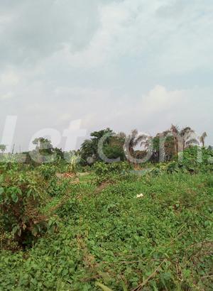 Mixed   Use Land Land for sale Ise/Orun Ise/Orun Ekiti - 7