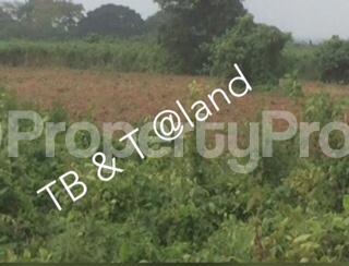 Commercial Land Land for sale Opposite DSS Estate Kurudu Abuja - 1