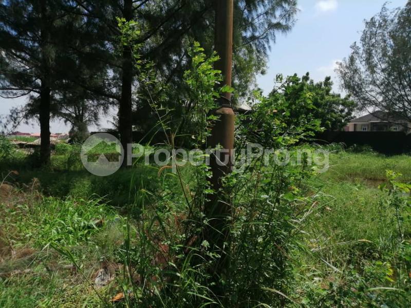 Land for sale VGC VGC Lekki Lagos - 4