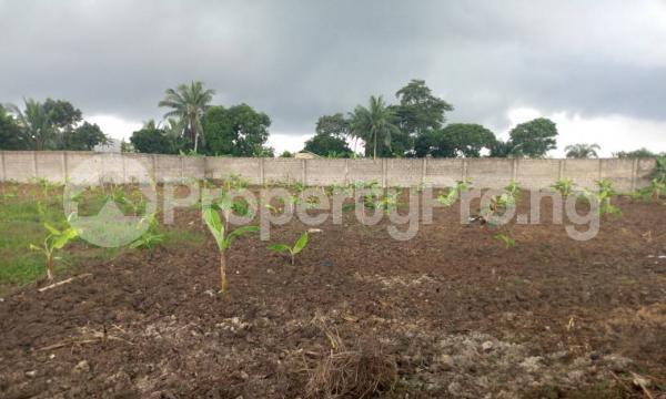 Mixed   Use Land Land for sale Idoro Road Uyo Akwa Ibom - 1