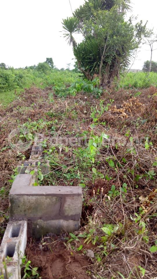 Land for rent Oke Afa Road Magboro bus stop Arepo Arepo Ogun - 0