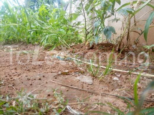 Land for sale keffi road Kaduna South Kaduna - 3