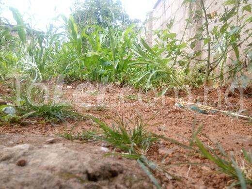 Land for sale keffi road Kaduna South Kaduna - 4