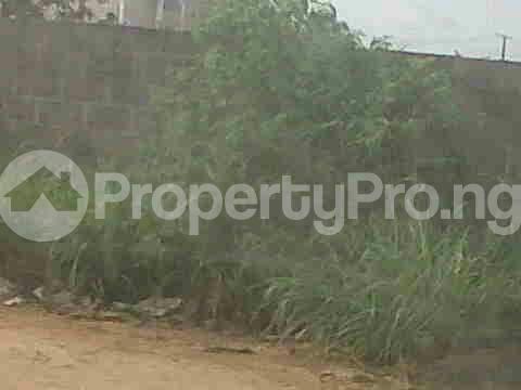 Residential Land Land for sale - Ejigbo Ejigbo Lagos - 2