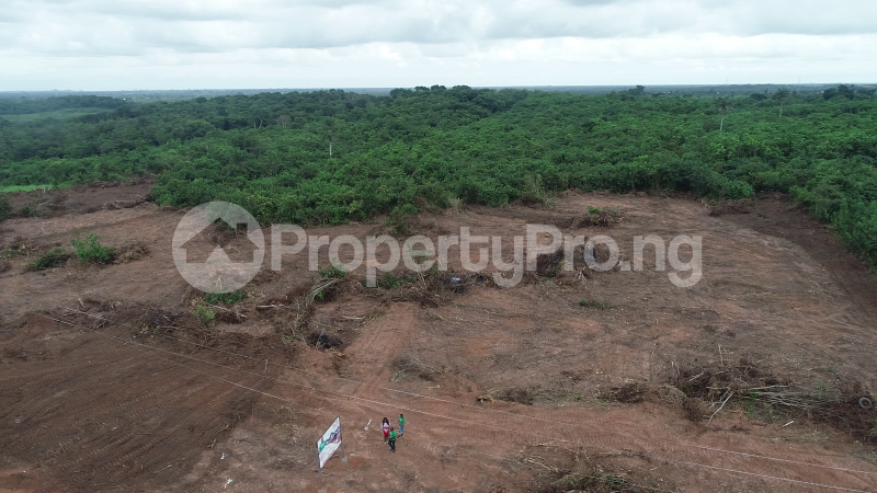 Mixed   Use Land Land for sale Ilara Epe Epe Road Epe Lagos - 3