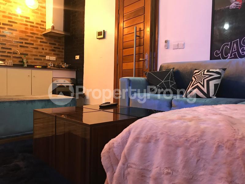 1 bedroom mini flat  Mini flat Flat / Apartment for shortlet T Y Danjuma Street Ligali Ayorinde Victoria Island Lagos - 18