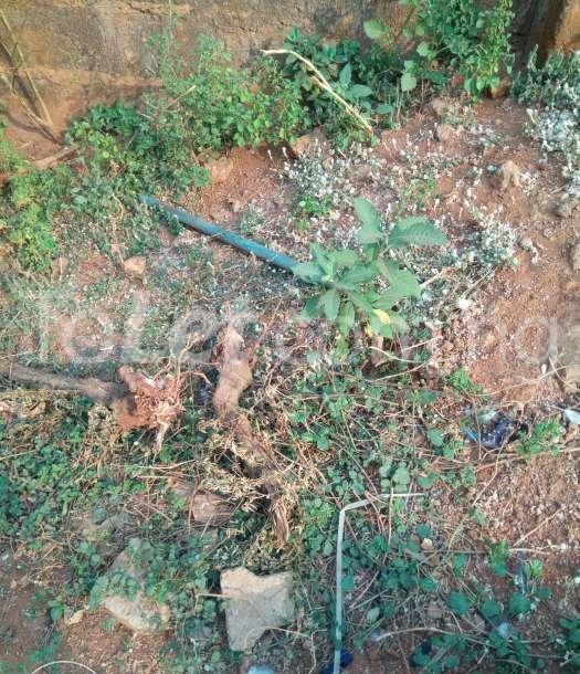 Land for sale kangu olunlade area Ilorin Kwara - 1