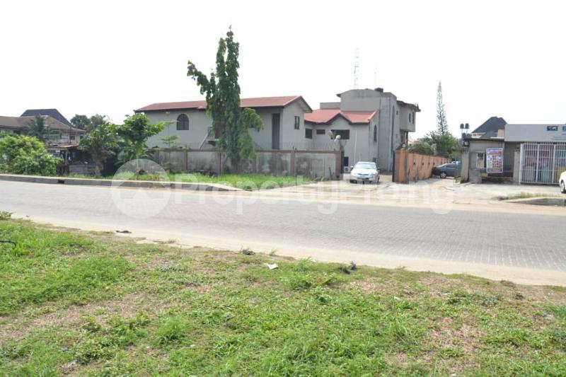 8 bedroom Detached Duplex House for sale Amuwo Odofin- Festac Link Bridge,  Festac Amuwo Odofin Lagos - 10
