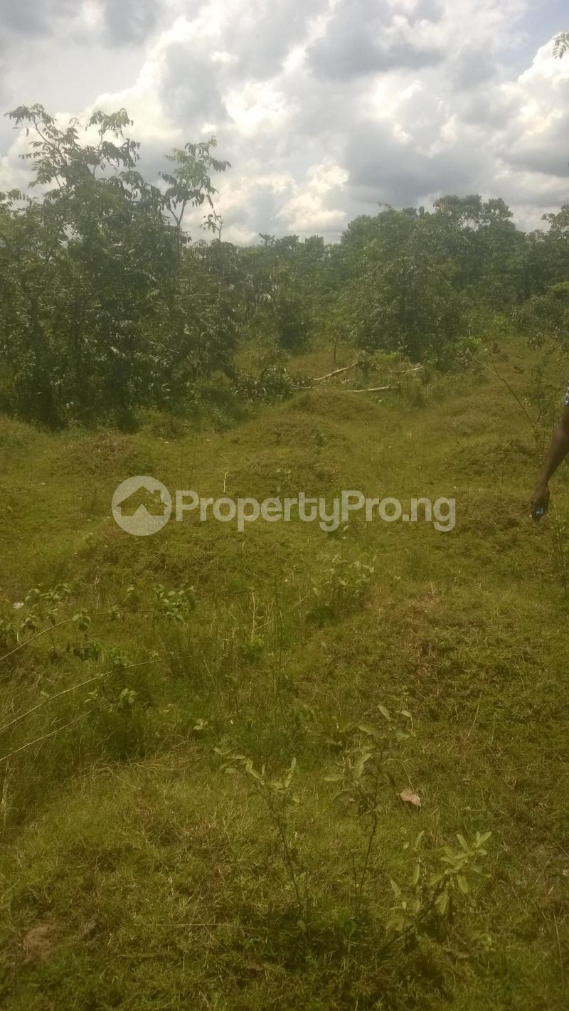 Residential Land Land for sale Agu Awka Awka South Anambra - 0