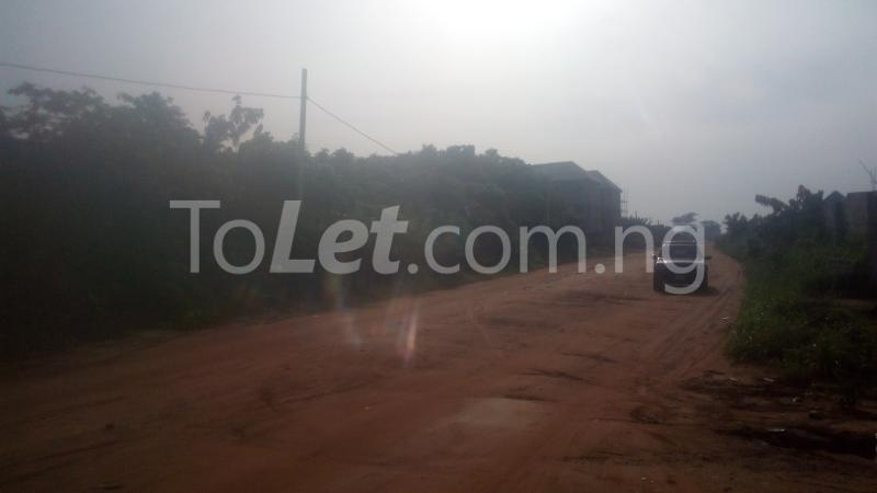 Land for sale Aladinma Northern Extension Layout. Owerri Imo - 3