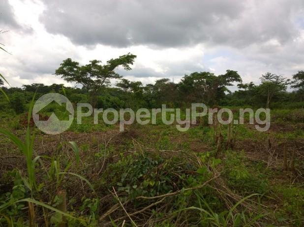 Land for sale  Odogun village along iseyin Abeokuta  Express way  Iseyin Oyo - 3
