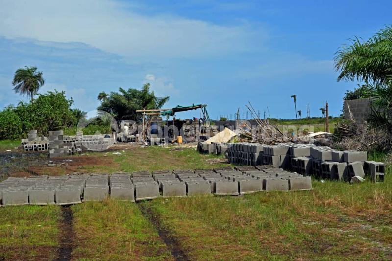 Residential Land Land for sale Shiriwon Town, Opposite Dangote Private Jetty Free Trade Zone Ibeju-Lekki Lagos - 6